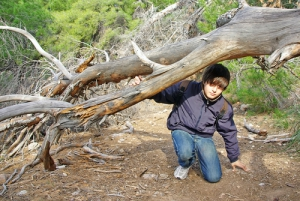Auch Kinder haben Spaß am Aktivurlaub