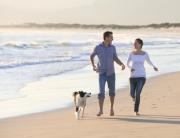 Ostseeurlaub mit Hund